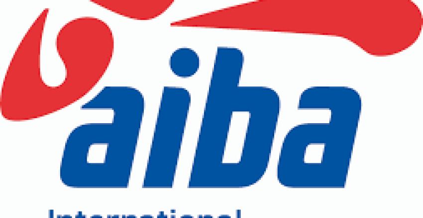 AIBA 3 Yıldızlı R&J, 3 Yıldızlı Antrenörler ve ITO Sertifikasyon Kursu Hakkında